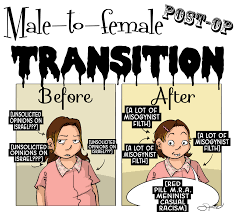 male to female transistion unsolicited opinions on israel
