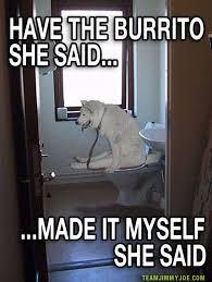 Meme Toilet - dog on toilet meme with gray decorations star wars toilet seat