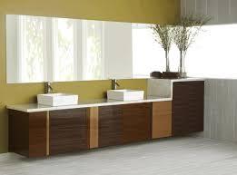 Decorative Bathroom Shelves by Long Bathroom Cabinets Rectangular Venetian Mirror With Decorative
