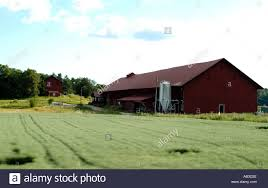 swedish country swedish country side farm farming red b norrkoping southern sweden