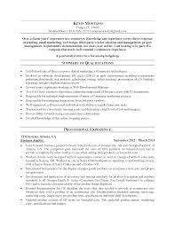 Example Of Business Analyst Resumes Resume Writing Tips For Business Analyst