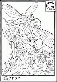 excellent tooth fairies coloring pages with fairy coloring pages