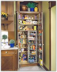 pantry cabinet ideas kitchen kitchen pantry cabinet design ideas internetunblock us