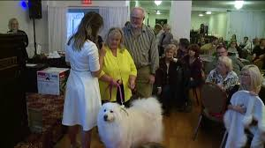 sweet treats for folks and pups in lycoming county wnep com