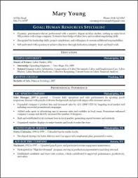 Good Entry Level Resume Examples by Examples Of Resumes Informative Essay Format Explanatory Outline