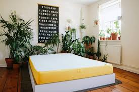 Sleep Number Innovation Series I10 Bed Reviews Quiddity Expert U0026 Consumer Reviews