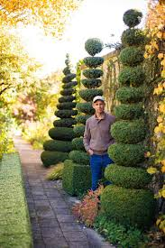 Horse Topiary Best 20 Topiary Garden Ideas On Pinterest Topiary Plants