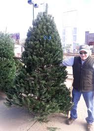 east colfax tree lot denver christmas trees 6030 east colfax com