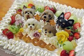 dog birthday cake amazing birthday cake for dog oye posts