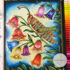 711 best sommernatt hanna karlzon images on pinterest coloring