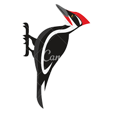 cartoon woodpecker icons canva