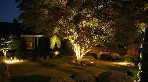 Cost Of Landscape Lighting Landscape Lighting Ideas Trees Landscape Lighting Tree