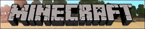 Serveur Minecraft TerriaCube