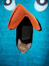 Perry Platypus Halloween Costume Box Homemade Diy Disney Perry Platypus