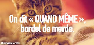 Merci Comme Meme - bescherelle ta mère apprendre le bon français avec des chatons