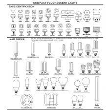 fluorescent bulbs base guide