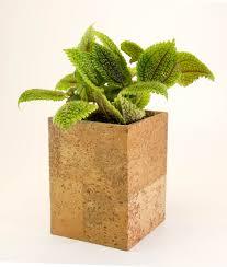 cork planter indoor planter succulent planter cactus planter