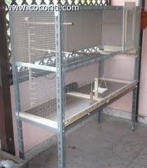 rete metallica per gabbie costruire una voliera per le nostre cocorite