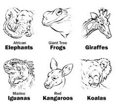 realistic animal coloring pages gentle revolution homeschooling archive realistic animal