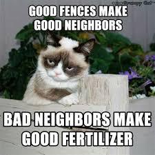 Create A Grumpy Cat Meme - th id oip zexh4dhtrbbmnurec3jw2ahaha