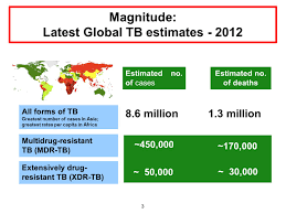 programmatic management of drug resistant tb pmdt in the