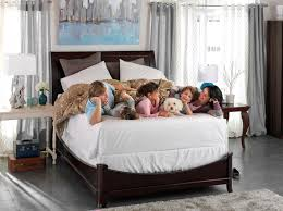 top 10 best adjustable bed reviews make your choice 2017