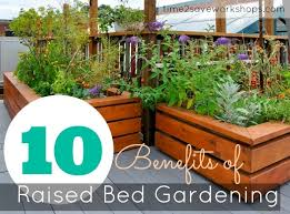 raised gardening 101 the benefits of a raised vegetable garden bed