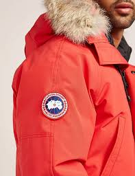 chilliwack bomber c 1 6 canada goose chilliwack padded bomber jacket tessuti