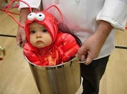 Cute Halloween Costumes Babies Image Cute Homemade Halloween Costumes Baby Lobster Jpg Roblox