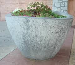 large concrete planter 09 tree with planter usd 2000 a large planter with a small tree is