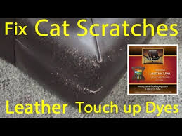 Leather Sofa Scratch Repair Kit How To Touch Up Cat Scratches On Leather Leather Dye Repair Kit