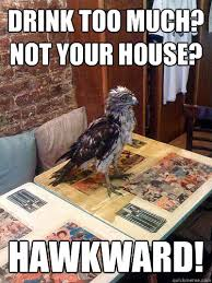 Hawkward Meme - ouch hawkward meme hawkward best of the funny meme