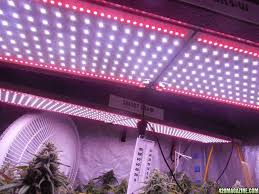 sale on 240 watt par limited edition led grow light