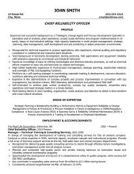 Plant Supervisor Resume Describe Your Interests Resume Judy Chicago Dinner Party Essay