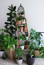 Indoor Gardening Ideas 19 Best Diy Indoor Garden Decoration Ideas Balcony Garden Web