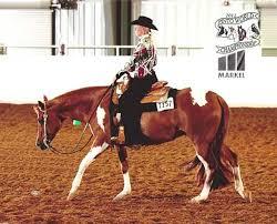 send roses harnish performance horses winners
