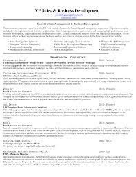 Customer Service Objective Resume 100 Resume Template Career Summary Job Summary Resume