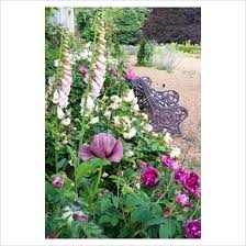 Juliette Bench 85 Best Pretty In Pink Images On Pinterest Garden Ideas Gardens
