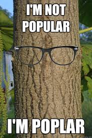 Tree Meme - don t worry my trunk is shade grown and organic hipster tree