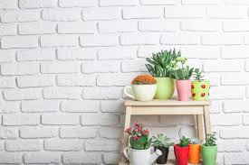 indoor gardening ideas you u0027ll thank us for giving you