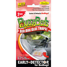 Bed Bug Detector Shop Buggybeds Bed Bug 2 Count Disposable Glue Traps At Lowes Com