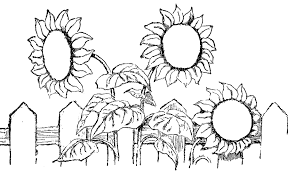 March Flower Coloring Pages Flower Coloring Pages Of Sunflower Coloring Page