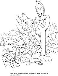 peter rabbit coloring pages cakes transfer ideas