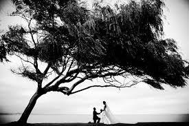 san francisco wedding photographer top 20 wedding photographers in the san francisco bay area
