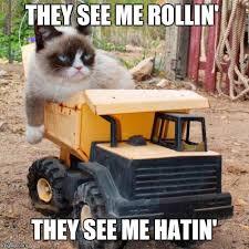 They See Me Rollin Meme - grumpy cat rolling imgflip