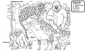 coloring activities york u0027s wild kingdom