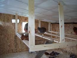Best Chicken Coop Design Backyard Chickens by Diy Chicken Roost It U0027s Pretty Simple Having Chickens Is Work