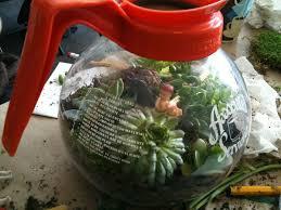 inexpensive terrarium containers with unique terrarium glass jars