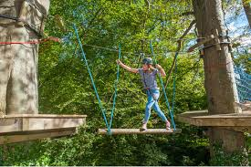 tree tops trail high ropes in wales for groups days out