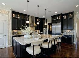 Staining Kitchen Cabinets Darker by Black Ebony Stained Kitchen Cabinets Dark Kitchen Cabinets What
